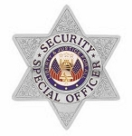 Security Badge - 6 Point Star - Silver or Gold