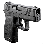 DIAMONDBACK 380 Firearm